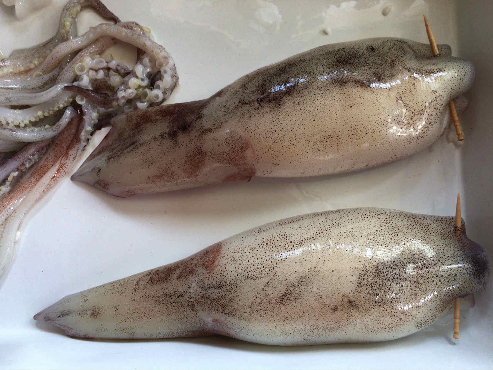 イカ飯作り方5