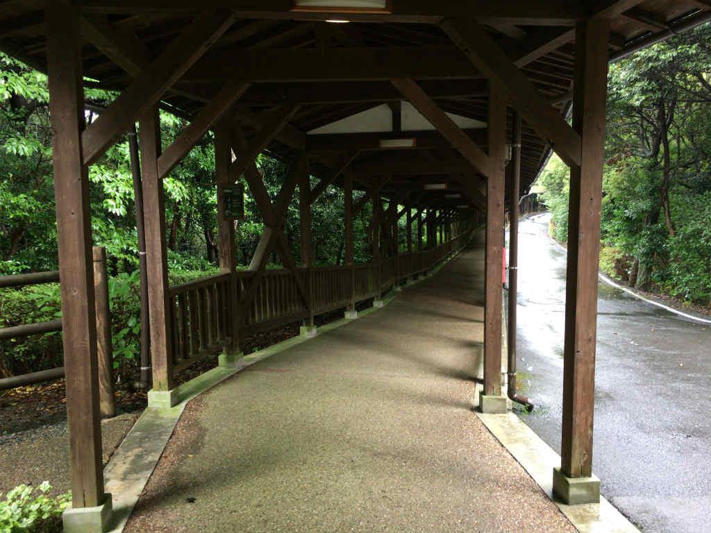 松江フォーゲルパーク13