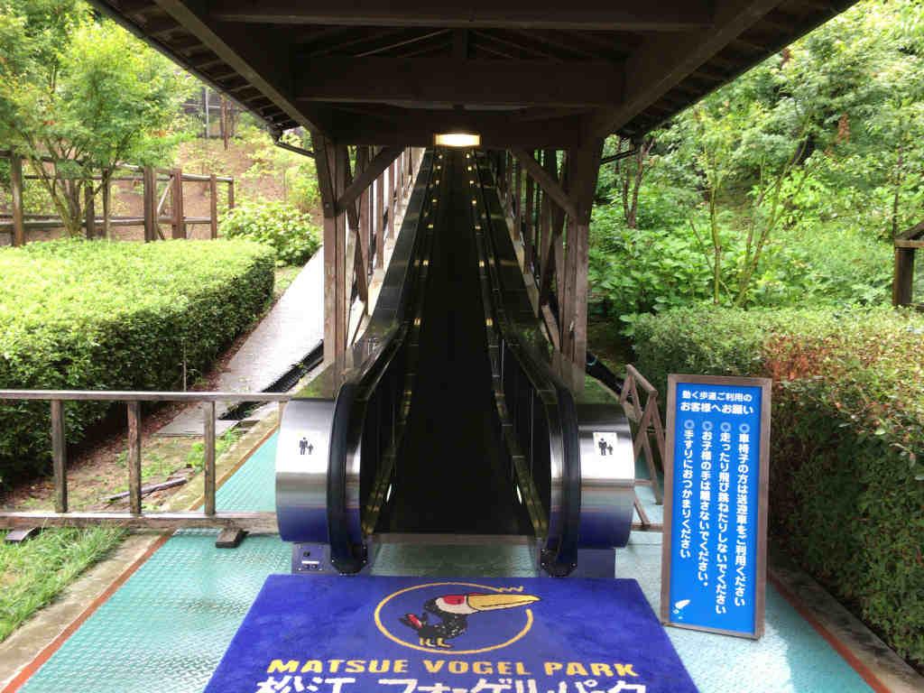 松江フォーゲルパーク9